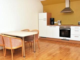 Spacious 1 bedroom apartment in Tallinn - 183