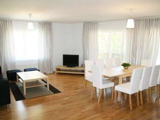 Brand New 4 Bedroom Apartment in Tallinn - 187