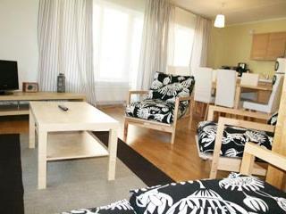 Brand new 2 level apartment in Tallinn - 186