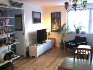Lovely 3 bedroom apartment in SOFO - 3733, Stockholm