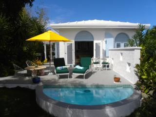 Charming 1 bedroom cottage with pool, St. Thomas