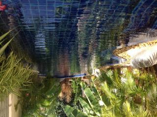 Zenith's Lagoon B & B