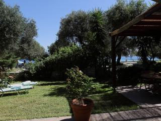 Chloe: Beachfront apartment in private garden, Barbati