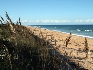 Great Ocean Views, Luxurious Cinnamon Beach, Palm Coast