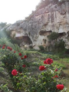 Cava Stafenna - I nostri percorsi guidati, fra natura e archeologia