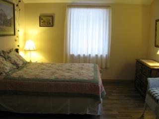 The bedroom has a queen bed