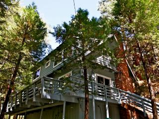 Rainbow Trout Lodge - close to Village and lake, Lake Arrowhead