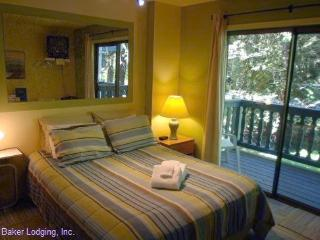88SLL Studio Condo close to Skiing and Hiking Mt. Baker, Glacier