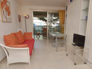 Cannes Petit Juas 1 Bedroom Apartment with a Balcony