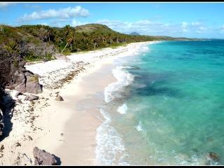 Villas 5* Palm - piscine privée - à 200m de la mer