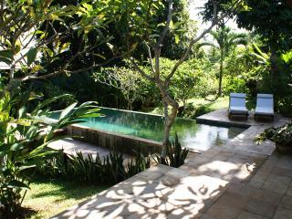 Villa Campur By Balion