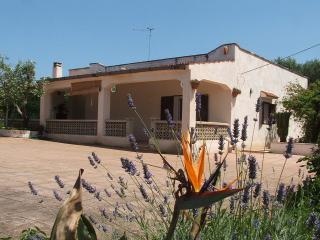 villa singola in campagna