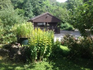 Penycoed Log Cabin Holidays with private hot tub, Oswestry