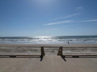 SURFSIDE CONDOMINIUMS UNIT 216, Corpus Christi