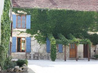 Spacious and Lovely House with Vineyard Views, Chatillon-sur-Seine