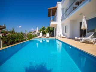 3 Bedroom Villa in Kalkan - Kiziltas (Villa Cinar)