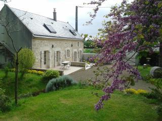 Gite Oenotourisme ' Loire Anjou' ; -Val de Loire  -SAUMUR ANGERS