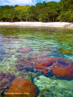 the coral reef starts just feet from the beach
