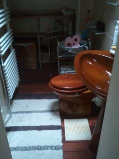 sèche-cheveux+lave linge+lessive qui reste+sèche-serviettes+ouverture par Vélux pour aération +VMC.