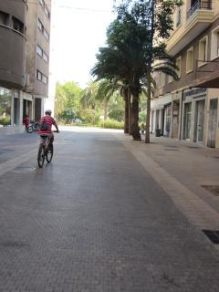 Vista calle (peatonal).