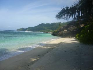 Anse Forbans beach is magnificent and undeveloped - 15 steps through our lush tropical garden!!