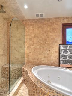 Separate shower and jacuzzi tub in master bathroom