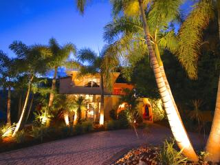 The Palm Island House - a Shangri-La! 1.5 blocks to Siesta Keys best beaches!