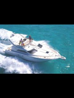Overhead view of similar style, we have covered bimini