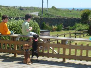 """Sea View Cottage"" Beach,Golf, Fishing,Tennis,Football Pitches 100 mts,Play area, Rosslare"