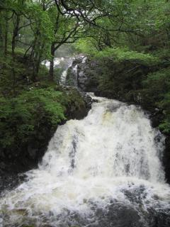 Waterfall at Ganllwyd - 20 mins drive from Dolydd Cottage