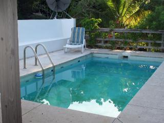 Longford Hideaway Greathouse: 3BR, pool, OG farm, Christiansted