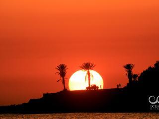 Ocean Surf Morocco