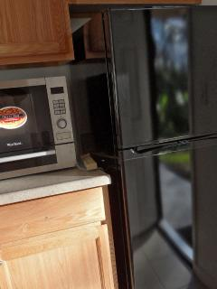 Microwave pizza oven and refrigerator