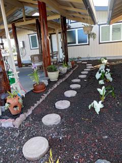 Pergola and garden