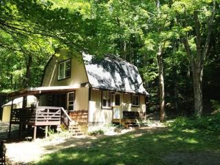 Hidden River Cabin!, Hessel