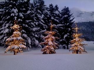 Appartement près de St. Moritz