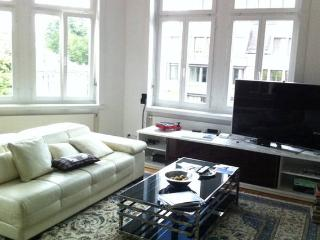 Perfect Room in the Heart of Zurich, Zúrich