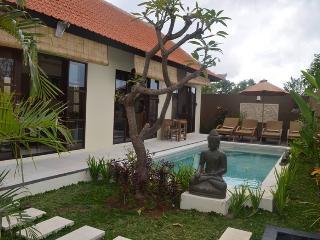 Villa Jero Bali 2 bd