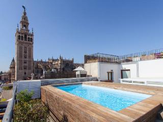 Precioso Apartamento. Piscina & Vistas. WIFI, Seville
