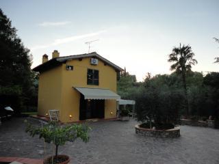 House Fiorentina, Florencia