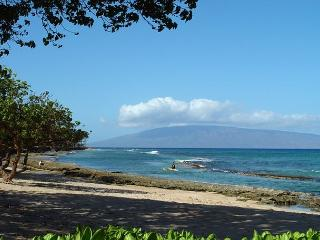 Hale Kai #102 - Your Home by the Sea in West Maui, Lahaina