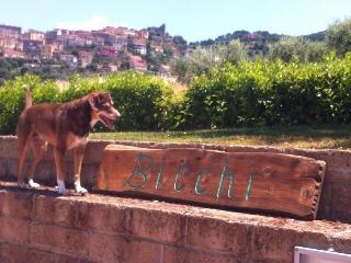 casa vacanze BICCHI BELVEDERE, Scarlino