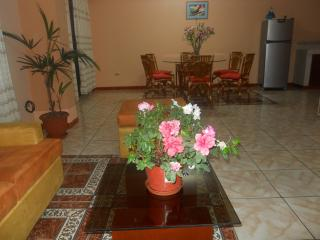 Friendly apartment in Tara house 2, Lima