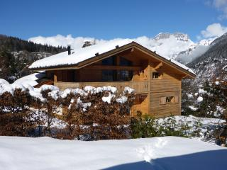 Ten74Chalets - Ski Chalet for rent in Chamonix, Les Houches