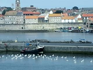 Mill Wharf, Gold graded, harbour view. Free WiFi, Berwick-upon-Tweed