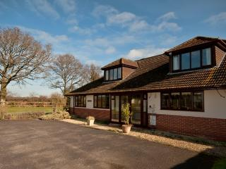 Deluxe Woodlands Lodge, Jurassic Coast, Dorset, Wareham