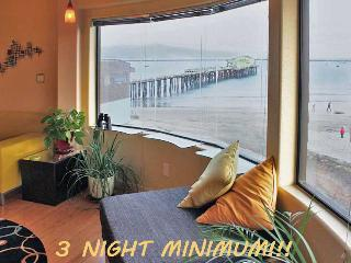 Exotic Tropical MAVERICKS Beachfront LOFT!, Half Moon Bay