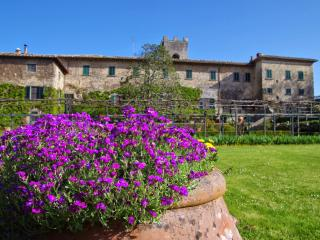 Apartment in Gaiole in Chianti, Chianti, Tuscany, Italy