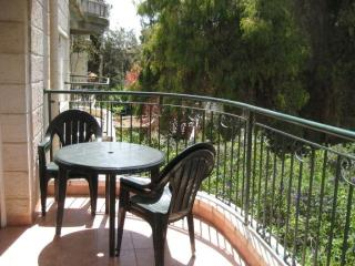 Spacious apartment rigt off of Emek Refaim