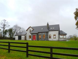 Cloone - 14452, Mohill